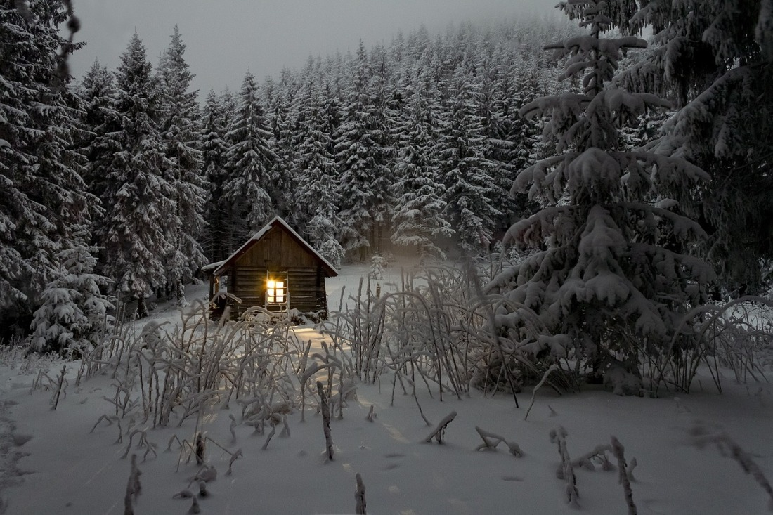 Small house with a lighted window in a snow covered pine forest